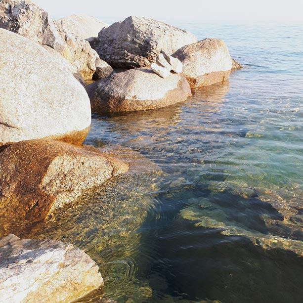 Watermarked profile image